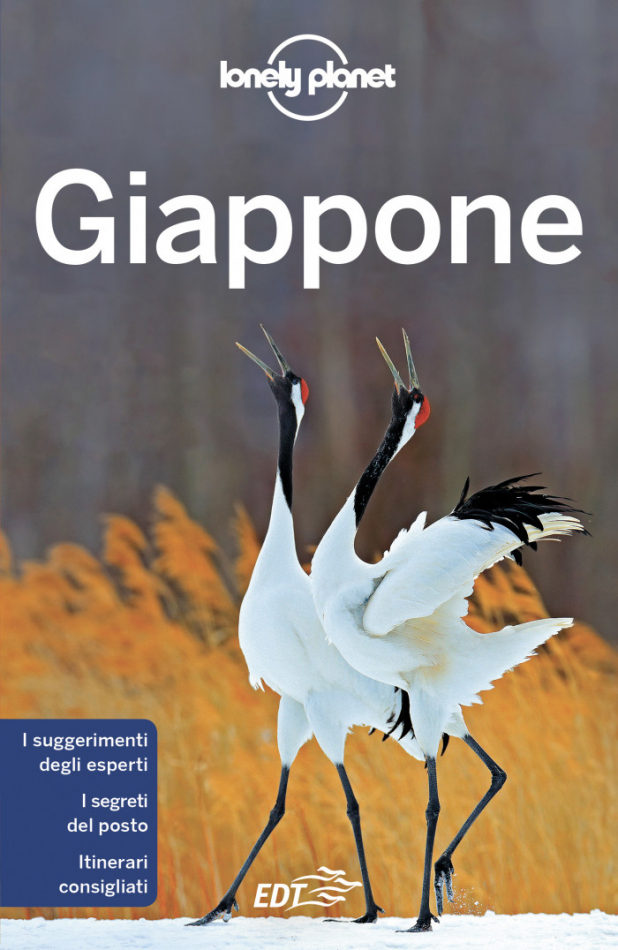 10 giappone